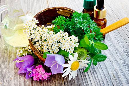 Siempre se ha entendido la Fitoterappia como una ciencia ligada a la medicina natural.